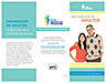 Adult Immunization Pamphlet - Spanish