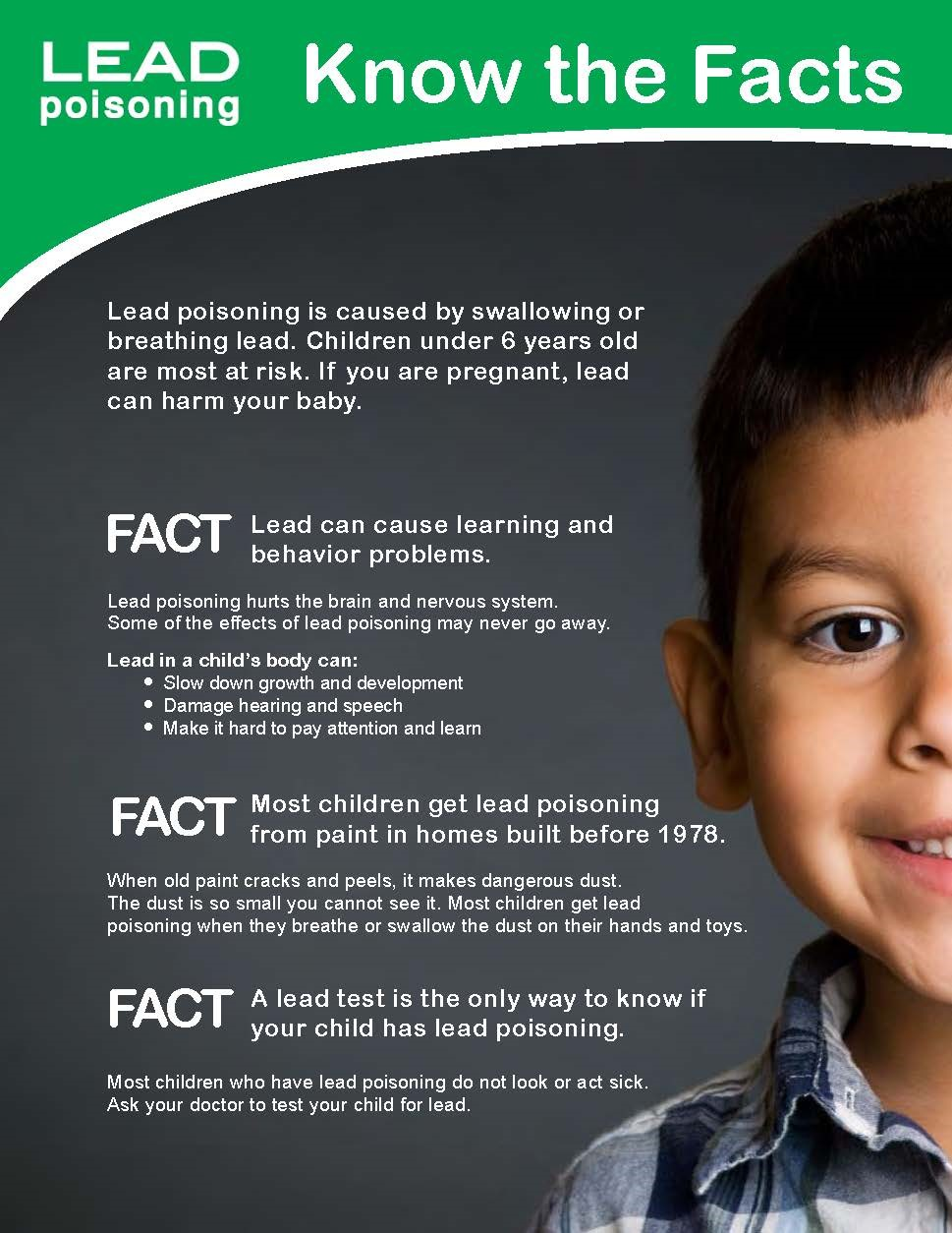 Lead Poisoning Know the Facts